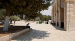 temple_mount_4